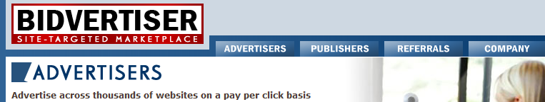 Bidvertiser and Adsense does not go together