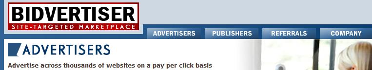 Bidvertiser and Adsense does not go together