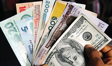 CBN Release money for forex